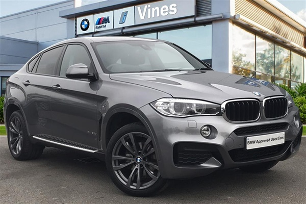 Large image for the BMW X6