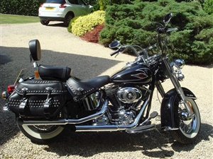 Large image for the Used Harley Davidson FLSTC