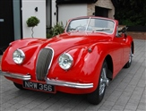 Used Jaguar XK120