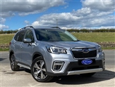 Used Subaru Forester