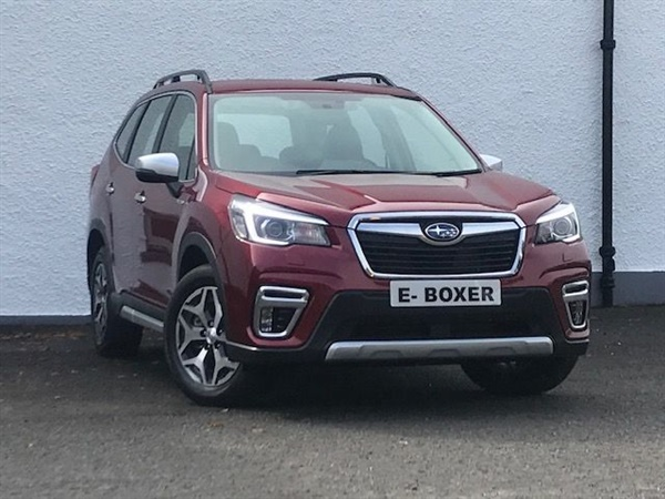 Large image for the Used Subaru Forester