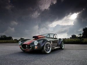 Large image for the Used Weineck COBRA